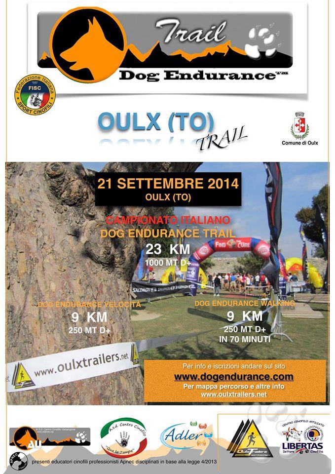 dog endurance