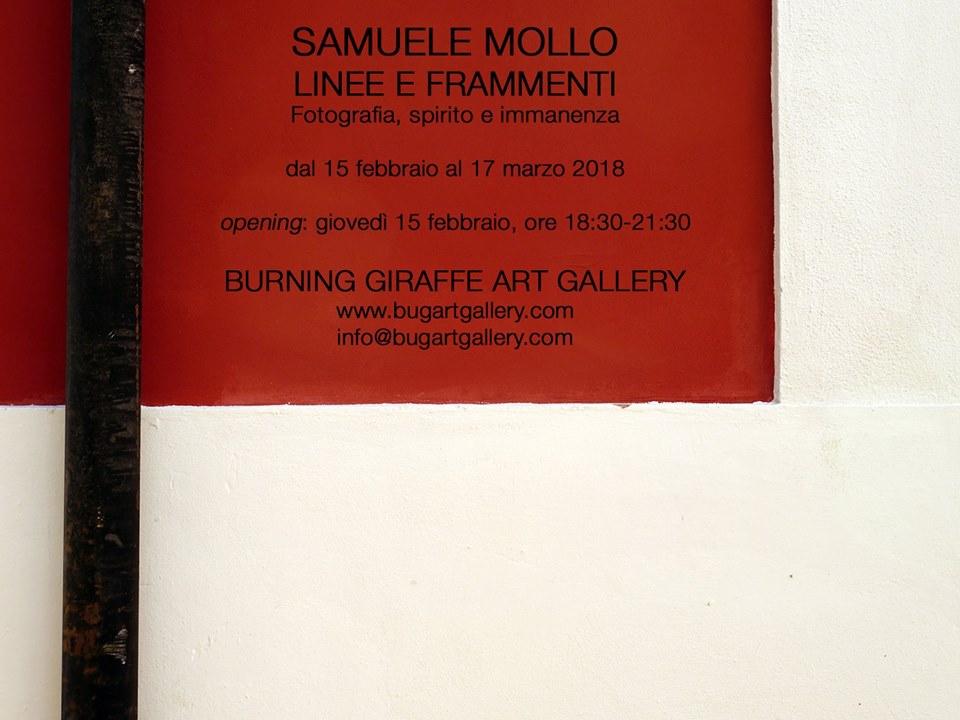 Samuele Mollo
